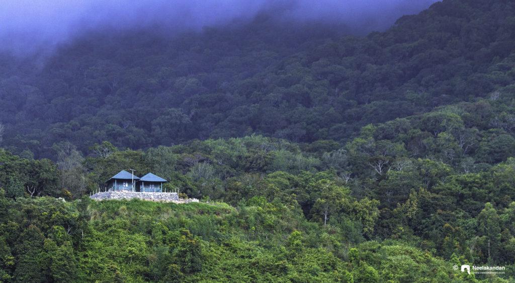 Pampadum sholay national park huts